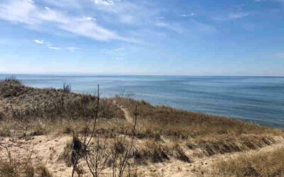 West Michigan Trail Reviews
